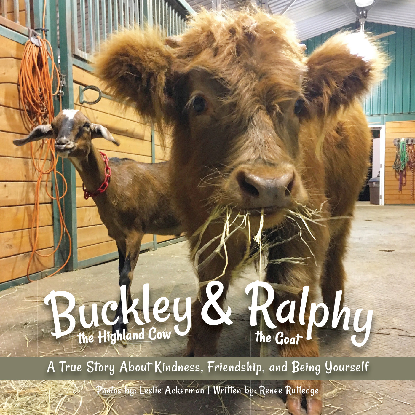 Buckley the Highland Cow and Ralphy the Goat Cover